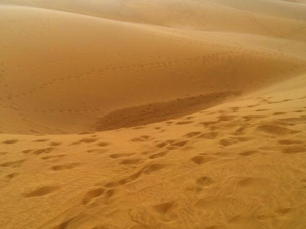 Deserto Maspalomas Gran Canaria