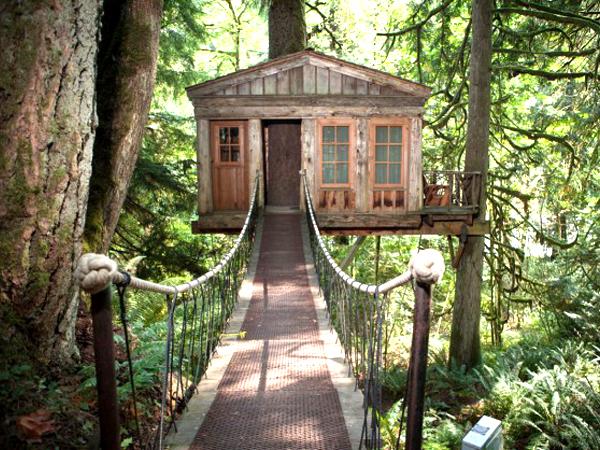 trend campeggio case sull'albero